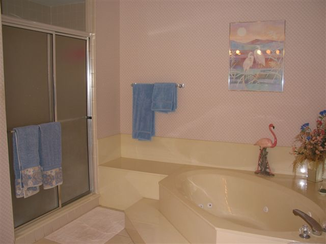 Master Bathroom - soaking tub and shower