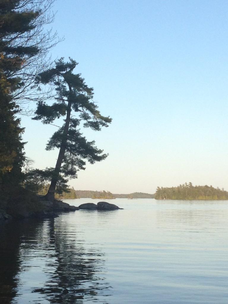 Lake Joseph view