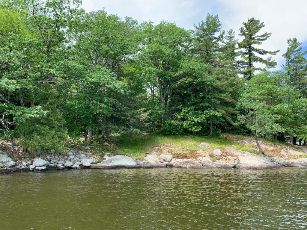 Tobin's shoreline